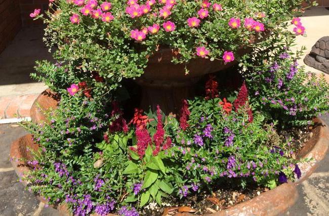 Fountain to planter