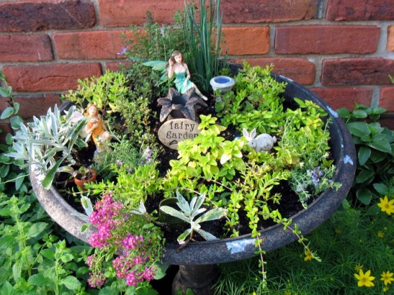 Jenny Alexander's filled out fairy garden
