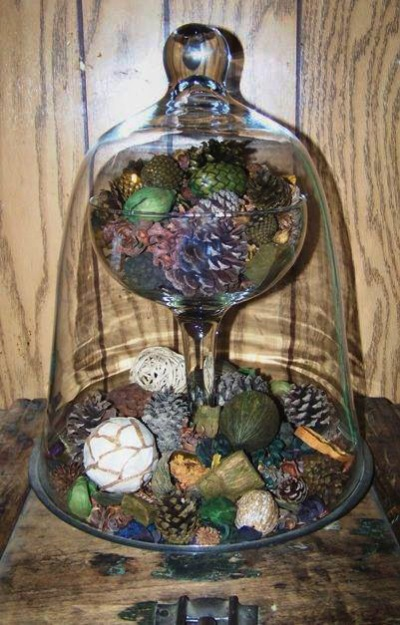 Sue Jordan's pine cone and nature collection