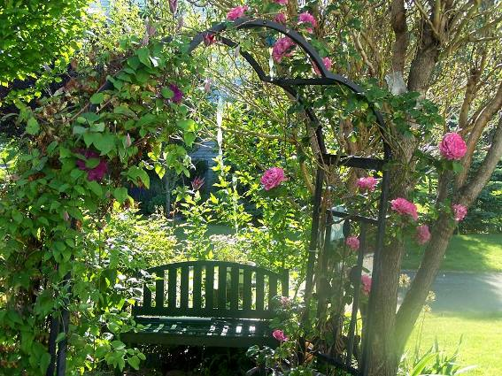 Carol McLaughlin's arbor shelters a bench