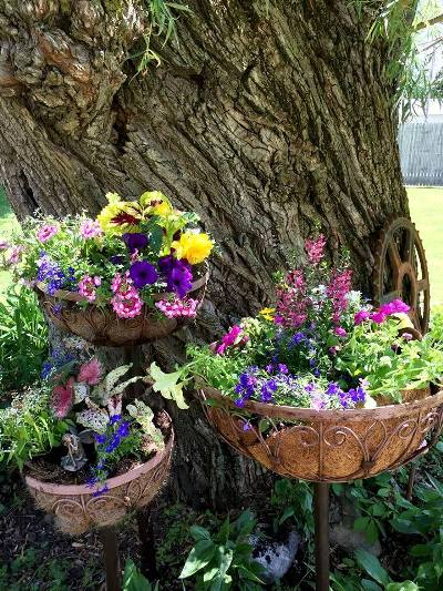 Myra's completed new planter
