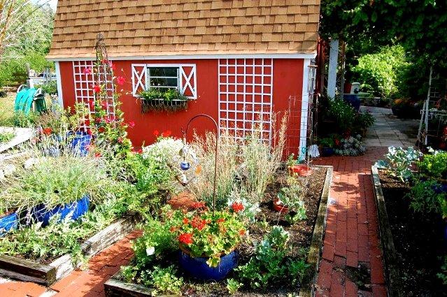 Tanya Goldsmith designs around her garden shed