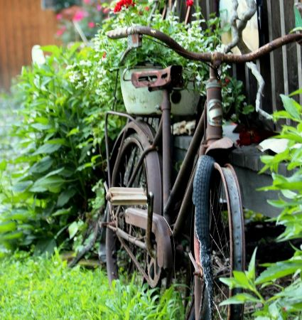 Tina Garrison 's bike is held together with rust!