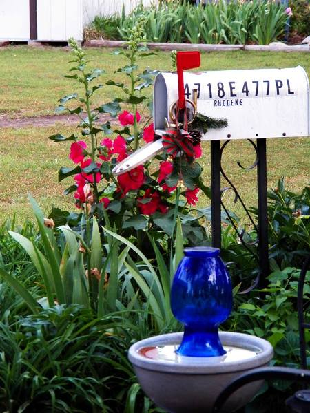 Jan Brown's garden mailbox. The red flag matches the Hollyhocks behind it and the pop of blue sparkles