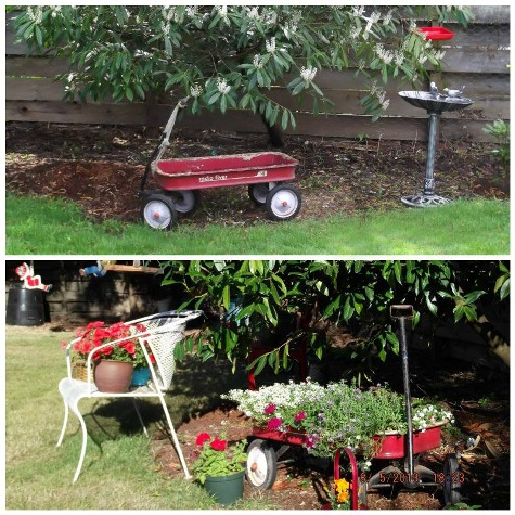 Barb Pawlik's before and after wagon planter