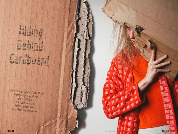 Hiding behind cardboard flesh magazine greg gainer kate mckay