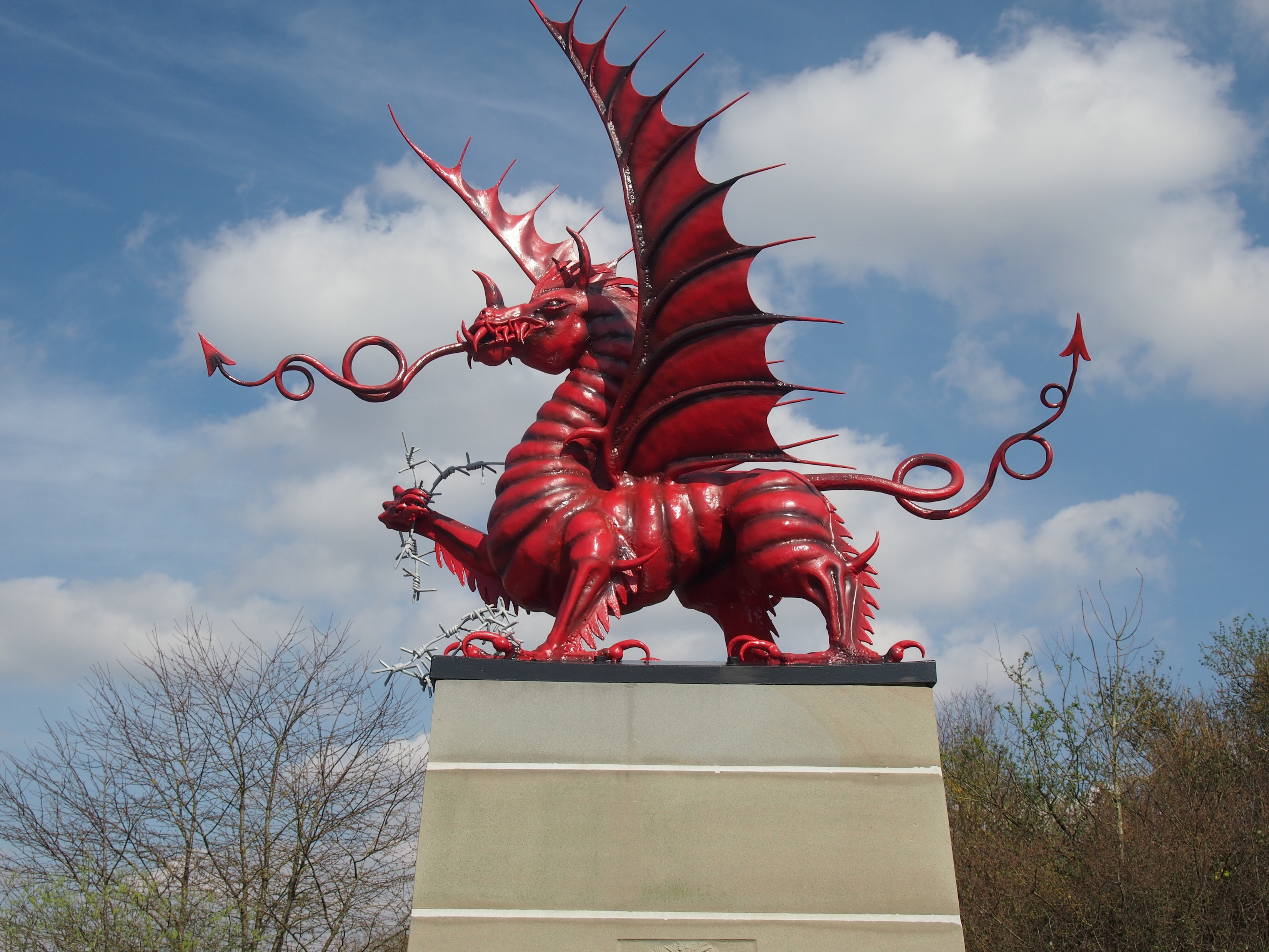Red Dragon at Mametz Wood
