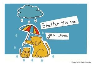 Shelter The One You Love