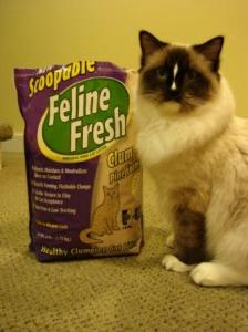 Scoopable Feline Fresh And Charlie
