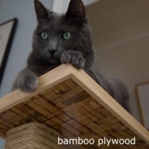 DKcat Bamboo Plywood