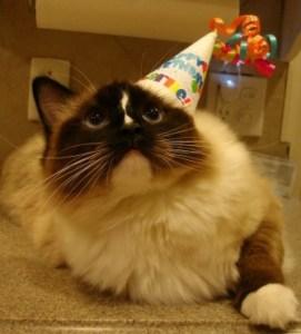 Happy 1st Birthday, Charlie!