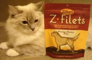 "Trigg says, ""Is that a dog on that package?!"""