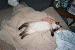 Angel on me when I just got home from the hospital