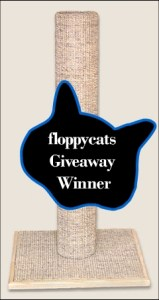 Winner of November 2010 Floppycats.com Giveaway: Sisal Base Scratching Post by TopCat Products