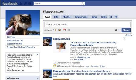Floppycats.com on Facebook