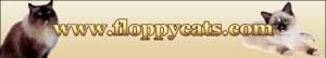 Floppycats.com's Banner Nov 2009 - Sept 2010