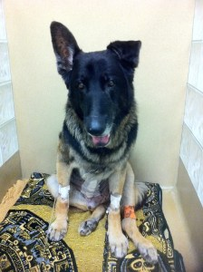 Tucker on Jan 30 - day after his torsion - not 24 hours later
