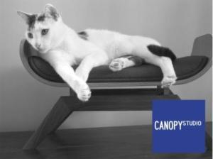 Bent Plywood Cat Lounge by CANOPYstudio