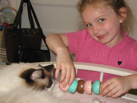 Ragdoll Cats and Children