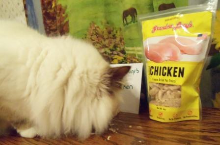 Roanoke eats Grandma Lucy's Freeze Dried Chicken