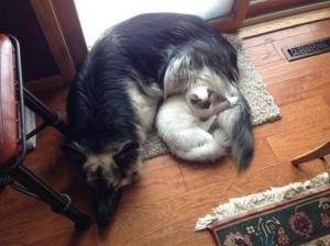 Kelchi and Colter cuddle