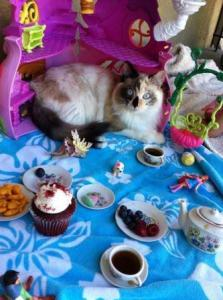 Maddie's tea party