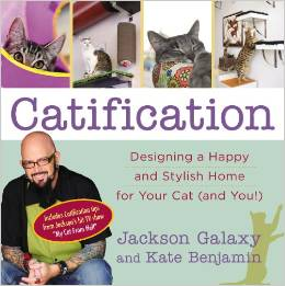 Book Review: Catification: Designing a Happy and Stylish Home for Your Cat (and You!)