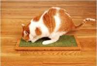 Lo Cat Scratch Furniture from Square Cat Habitat