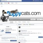 Are You on Social Media Networks? So is Floppycats!