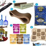 Charlie's 6th Birthday Favorite Cat Products Giveaway!