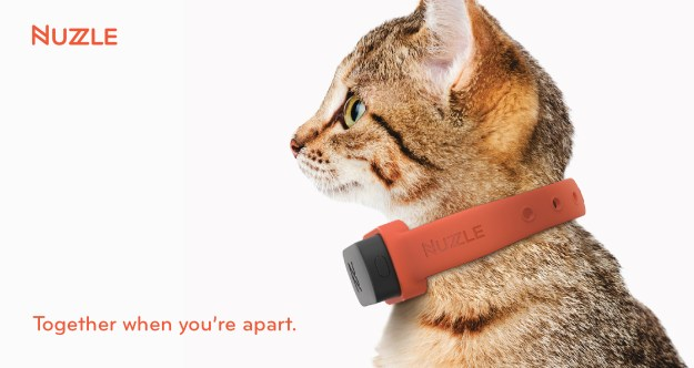 Nuzzle A GPS Tracking Pet Collar App and Insurance (3)