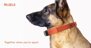 Nuzzle A GPS Tracking Pet Collar App and Insurance