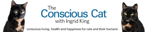 The Conscious Cat Banner