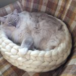 Exclusive FLOPPYCATS Coupon Code for Jenny's KnitCo on Etsy