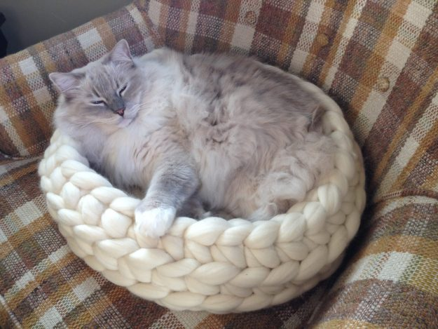 Chunky Knitted Cat Bed from Jennys KnitCo on Etsy Product Review
