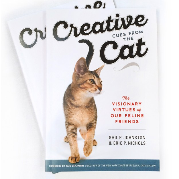 Creative Cues From the Cat The Visionary Virtues of Our Feline Friends