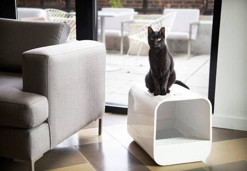 Grand PooBox Modern-Style Covered Litter Box Kickstarter Campaign 3