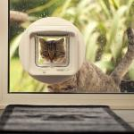 SureFlap – The Pet Door Accessible with a Microchip