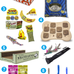 Charlie's 7th Birthday Favorite Cat Products Giveaway!
