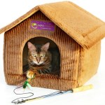 Bonus July Giveaway! Neko Pawdz Pet House!