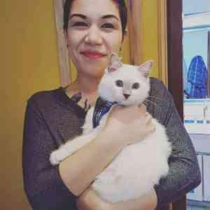 Chemo - Ragdoll Kitten of the Month 8