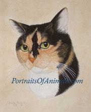Calico Cat by Cherie Vergos