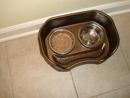 Neater Feeder Bits of Wet Food on Floor