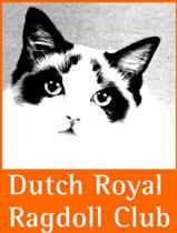 Dutch Royal Ragdoll Club (DRRC) Banner