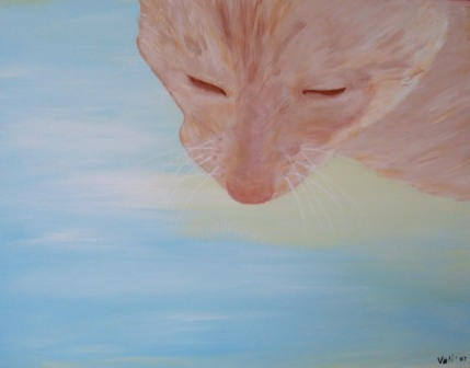 Vali Shoup Cat