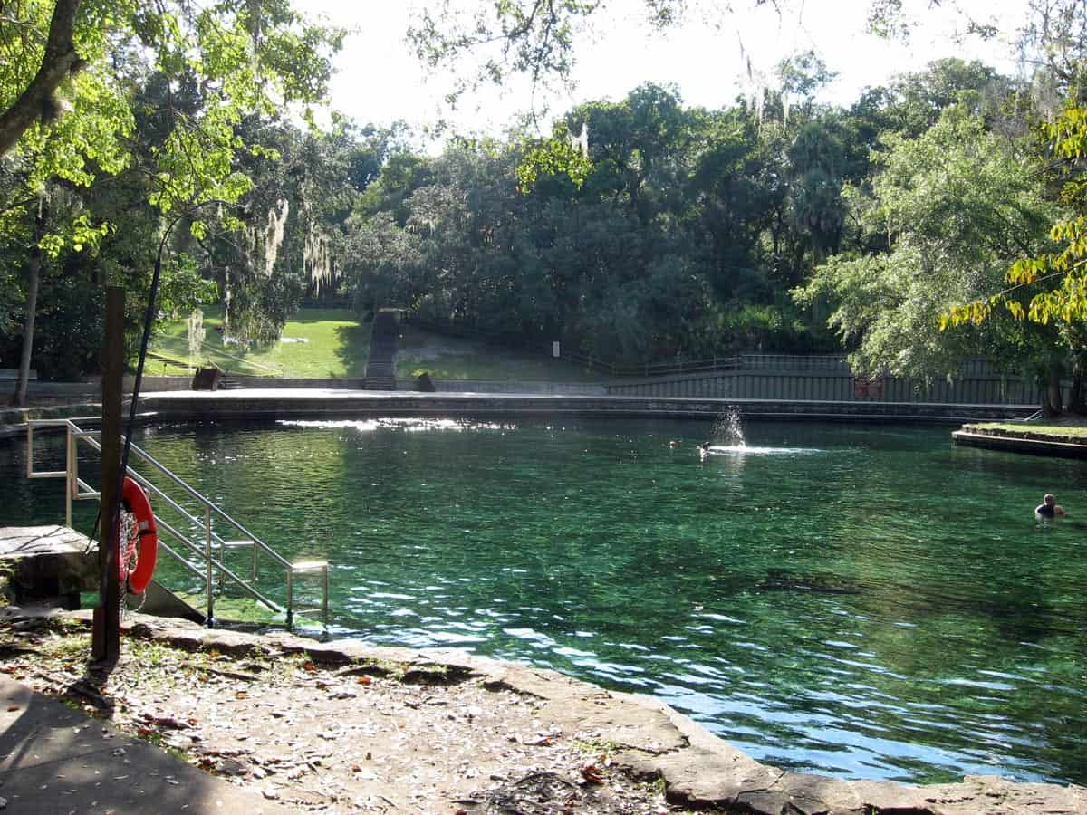 Florida Springs Where You Can Swim Snorkel And Dive