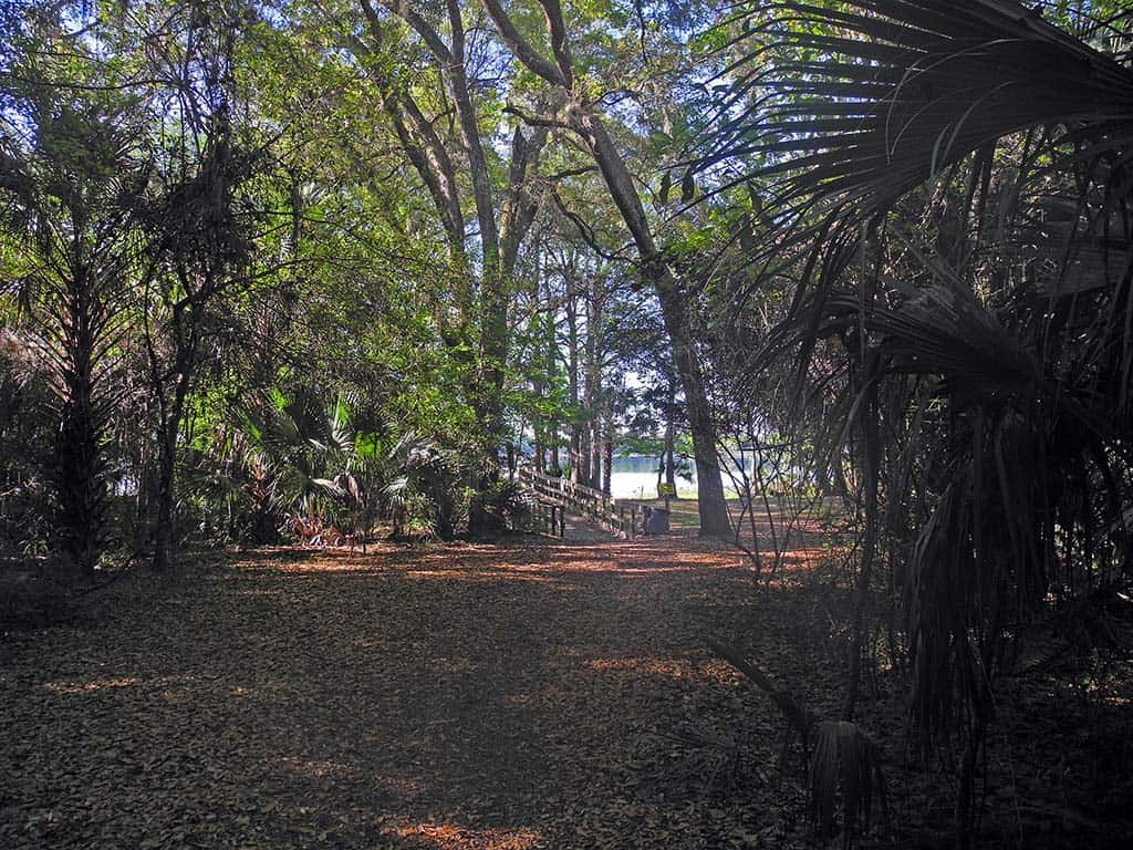 Camping Near Beach In Northeast Florida
