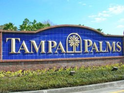 Tampa Palms New Tampa Homes For Sale
