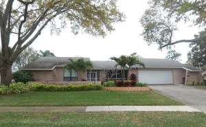 Countryside Clearwater Florida Homes For Sale