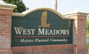 West Meadows New Tampa Homes For Sale
